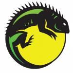 iguanarchist Profile Picture